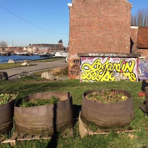 Réunir autour du jardinage : le pari réussi du Jardin des Agrions