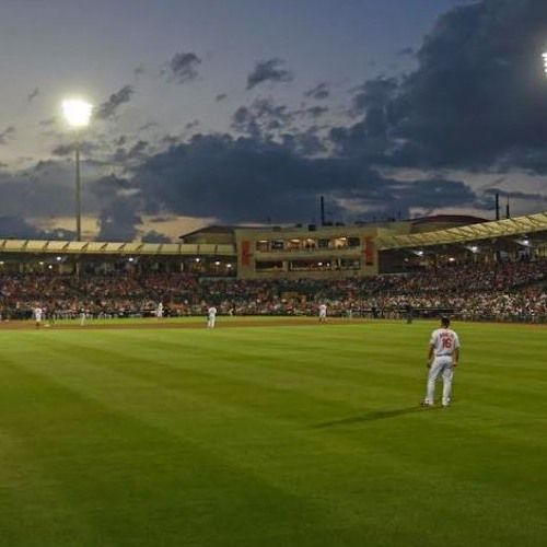 The Payoff Pitch - Spring Training Midway Point