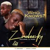 Zinoleesky Feat Lil Frosh  Who Knows