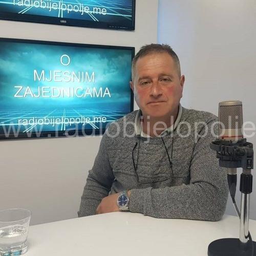 O MJESNIM ZAJEDNICAMA - Stojan Janković - 14.3.2019