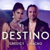 Greeicy Ft Nacho - Destino