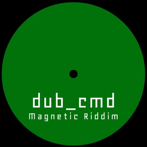Magnetic Riddim