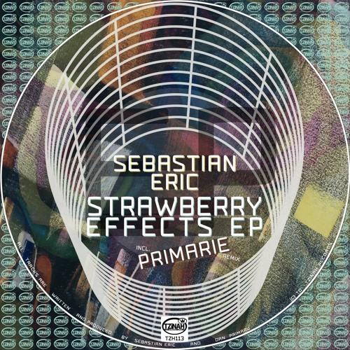 Sebastian Eric - Not This Time (Original Mix) Preview