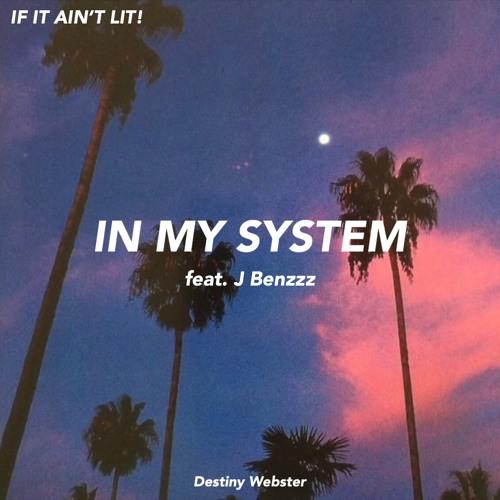 IN MY SYSTEM feat. J Benzzz (prod. Palaze)