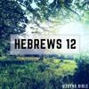 Download Bible Study: Hebrews Chapter 12 Mp3