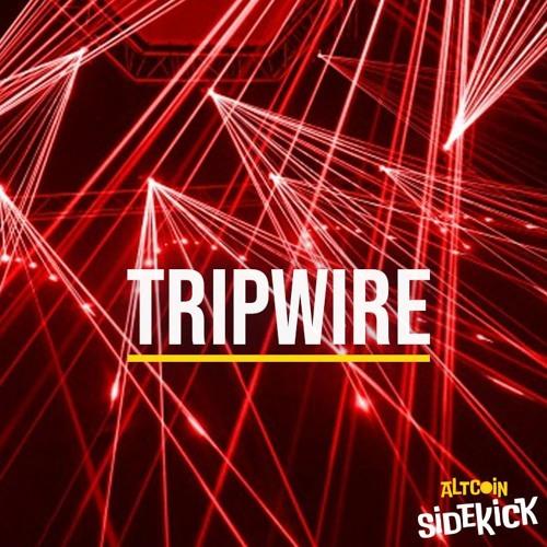 039 Tripwire