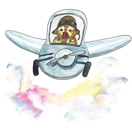 Flygvisa