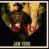 Download This is a  Real Armageddon.. RMX ,Vocal & INST prod,..By Jam York ..Original riddim  by Negritage Mp3