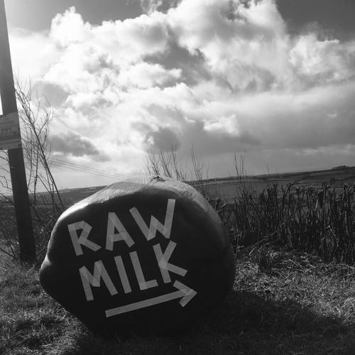 Joedan - Raw Milk