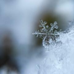 Winter Child (겨울아이) - HA EUN JEE (하은지)
