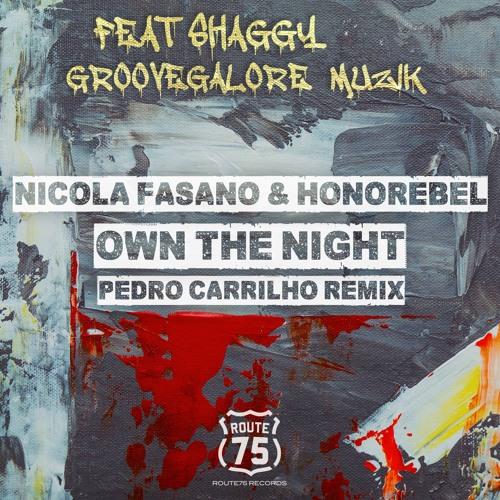 Nicola Fasano & Honorebel Ft Shaggy & GrooveGalore MuziK - Own The Night (Pedro Carrilho Preview)