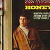 Honey - Bobby Goldsboro(cover)