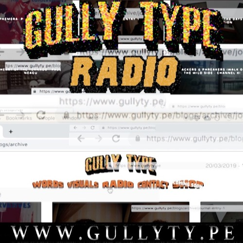 GULLY TYPE RADIO (20.3.19)