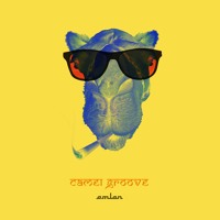 Camel Groove