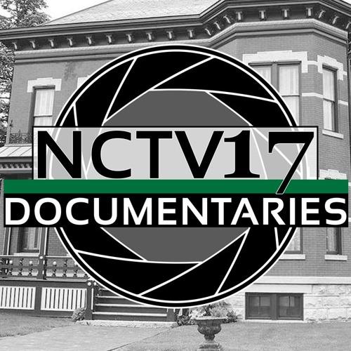 Naperville Recollections: Modern Development