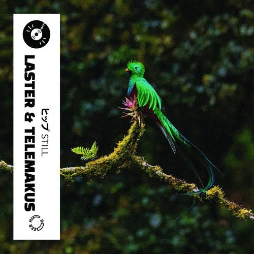 Laster - Still (ft. Telemakus)