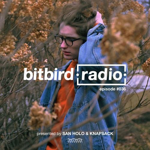 San Holo Presents: bitbird Radio #036 w/ Knapsack