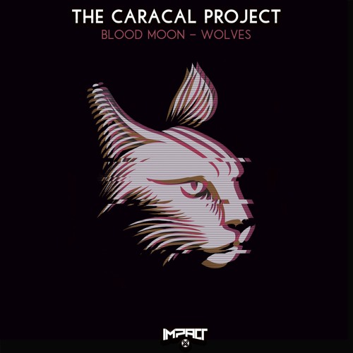 Premiere: The Caracal Project 'Blood Moon' [Impact Music]