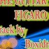 THE GUITARS FIGARO - BOXIDRO