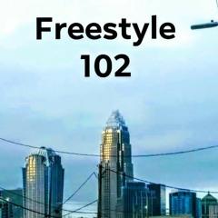 Freestyle 102