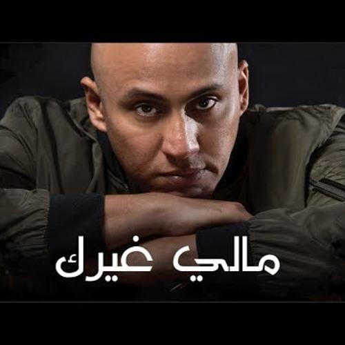 سلطان العماني - مالي غيرك (حصريا) 2019