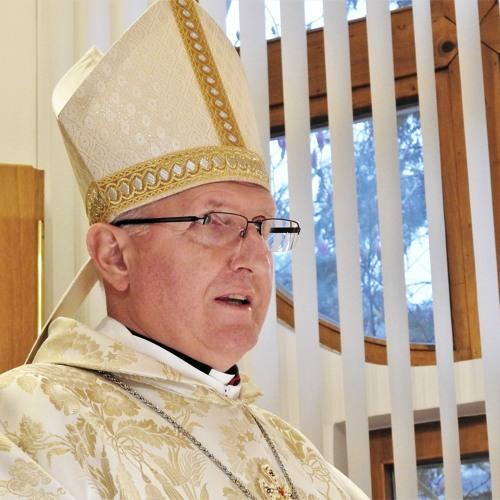 Prisluhni pridigi med sveto mašo v Karmelu Sora