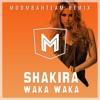 Shakira - Waka Waka (Moombahteam Remix)