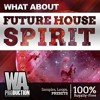 Future House Spirit   2,2 GB Of FL Studio Templates, Sounds & Presets!