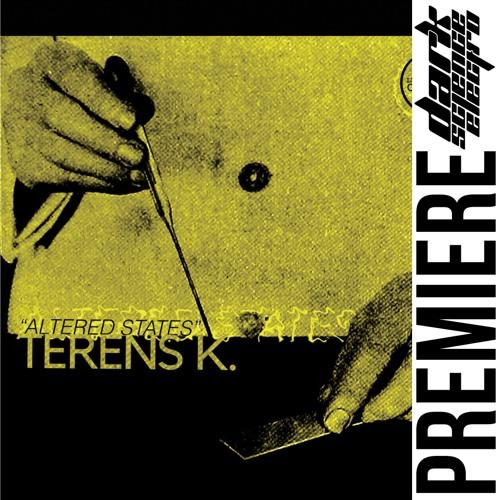 PREMIERE: Terens K. - Relativity
