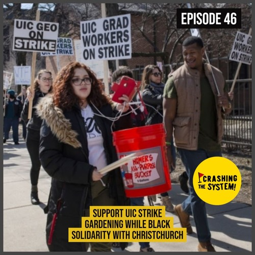 Support UIC Strike; Gardening while Black; Solidarity with Christchurch; Golan