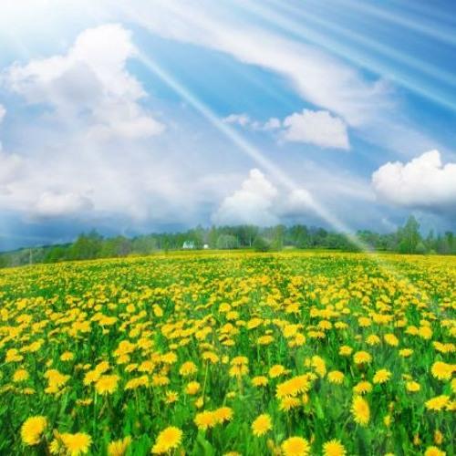 Час української пісні Весна в песнях Украины 03-04-19