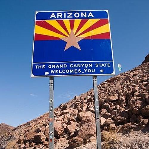 #62 Wild Wild West: Arizona's Charter School Experiment