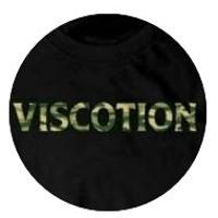 Viscotion Band - Sebuah Kenangan untuk Masa Depan (full version) Artwork