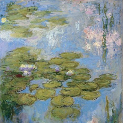 Late Monet, Zilia Sánchez