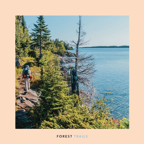 Windy & Carl - Forest Trails