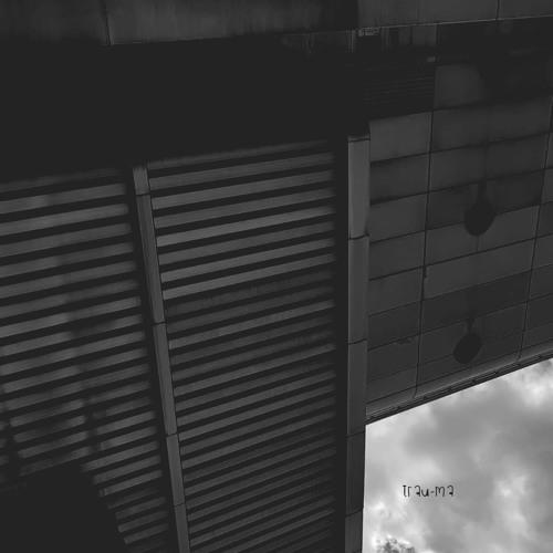 Lethal M - Natural Behavior (Original Mix) [TRM83]