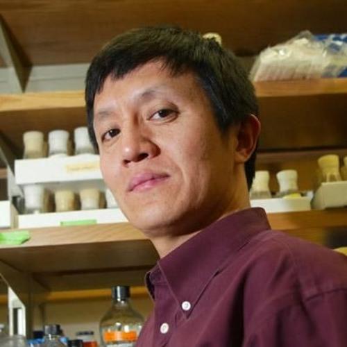 34: Nature vs Nurture with Dr. Liqun Luo