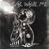 Vini Vici Vs. Liquid Soul - Universe Inside Me (You Are Not Alone Mashup)