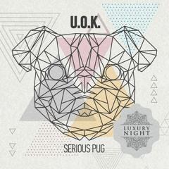 U.O.K. - Data Provider (Original Mix)