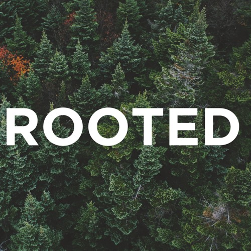 3-31-2019 - Rooted - Why is the Church Important?