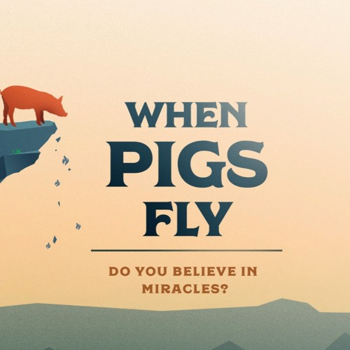 When Pigs Fly - The Phenomenon of Provision