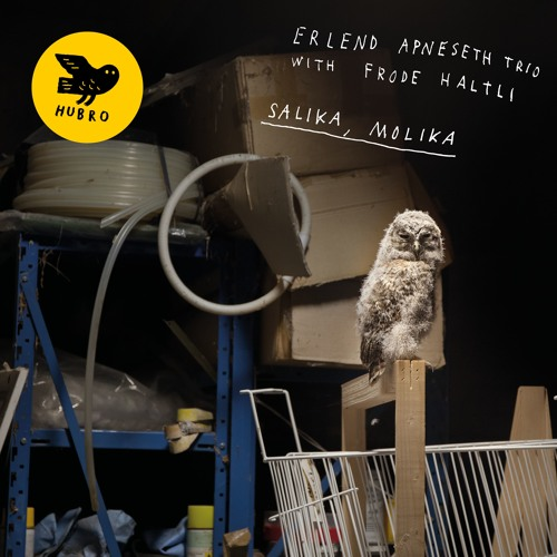 Erlend Apneseth Trio with Frode Haltli: Salika, Molika