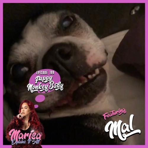 Episode 109: Puppy Monkey Baby ft. Mal