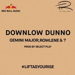 Gemini Major & Rowlene - Downlow Dunno