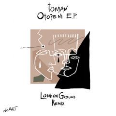 Toman - Fantanized