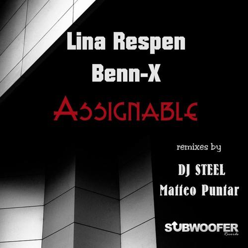 Assignable (Matteo Puntar Remix)(Preview)