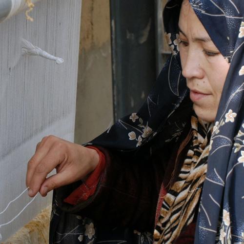 Training, info, women's involvement can bolster fragile states. Patrick Safran, ex- ADB official