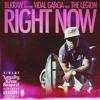 Right Now feat. Vidal Garcia