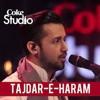 Atif Aslam, Tajdar - E-Haram,