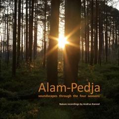 Alam-Pedja soundscapes through the four seasons (Preview)